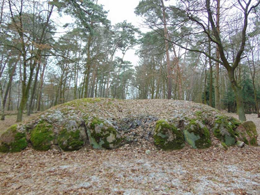 Will Discovery of Ancient Tombs in Poland Halt a Proposed Coal Mine?