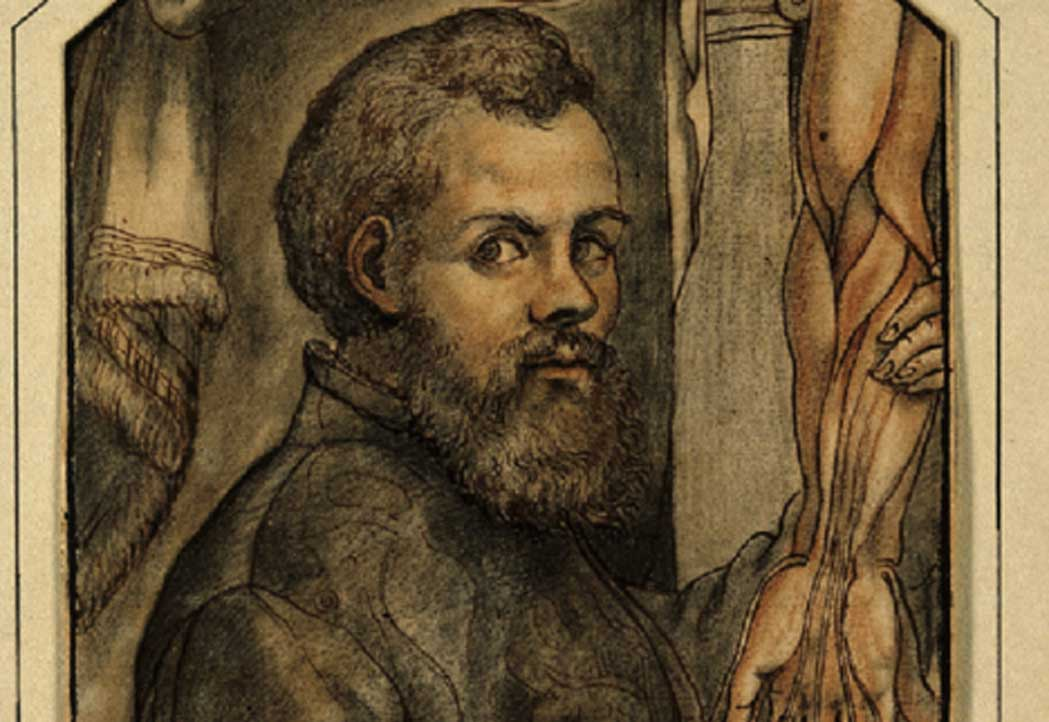 the renaissance and andreas vesalius essay Andreas vesalius i biography andreas vesalius was born on dec 31, 1514, in brussels, the son of andries van wesele and his wife, isabel crabbe vesalius's paternal ancestors, who hailed from the german town of wesel, came to brussels in the early 15th century and became prominent as physicians and pharmacists.