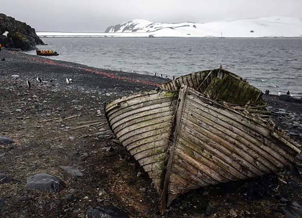 Journey to remote Antarctica aboard the Sea Adventurer.