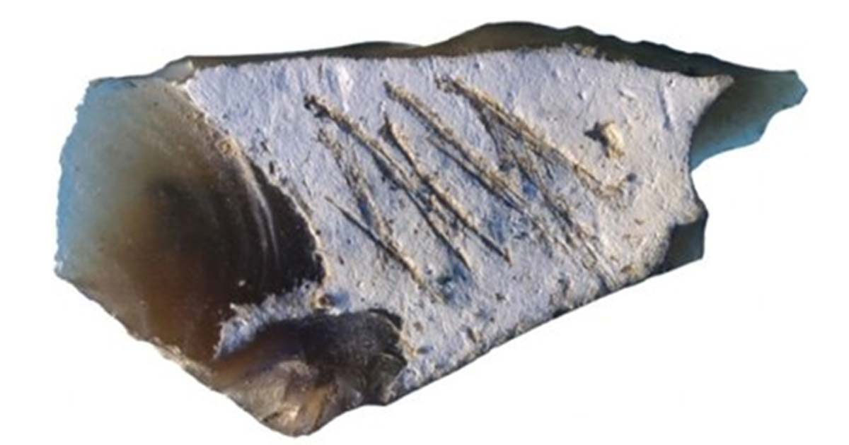 Engraving found in Crimean cave on flint flake from Kiik-Koba layer IV.