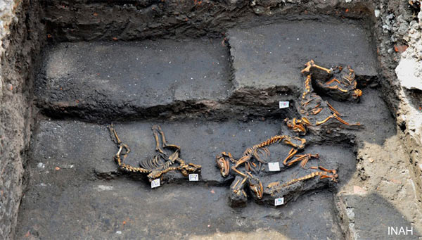 Discovery of Aztec dog cemetery puzzles archaeologists ...