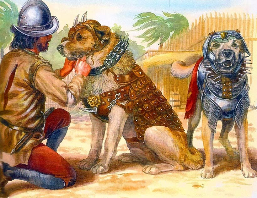 An illustration of Spanish war dogs in battle armor, which must have been similar to Becerrillo of Spanish conquistador fame. (Public domain).