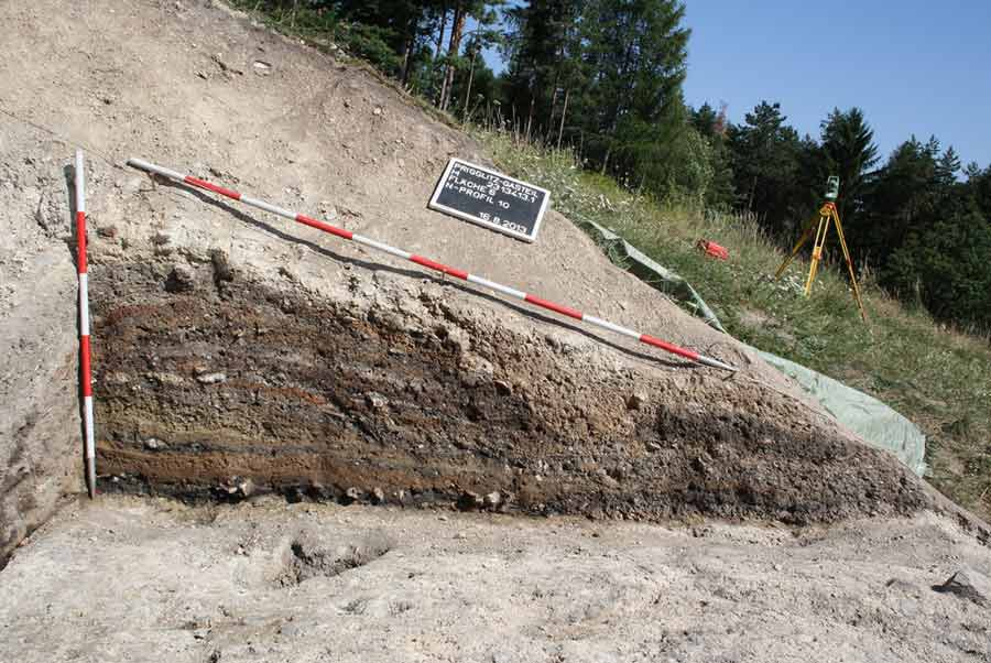 Bronze Age food, plant and cereal remains, from a mining site in Austria dating to the 11th - 9th century BC have been studied and the scientists found no evidence of food processing.