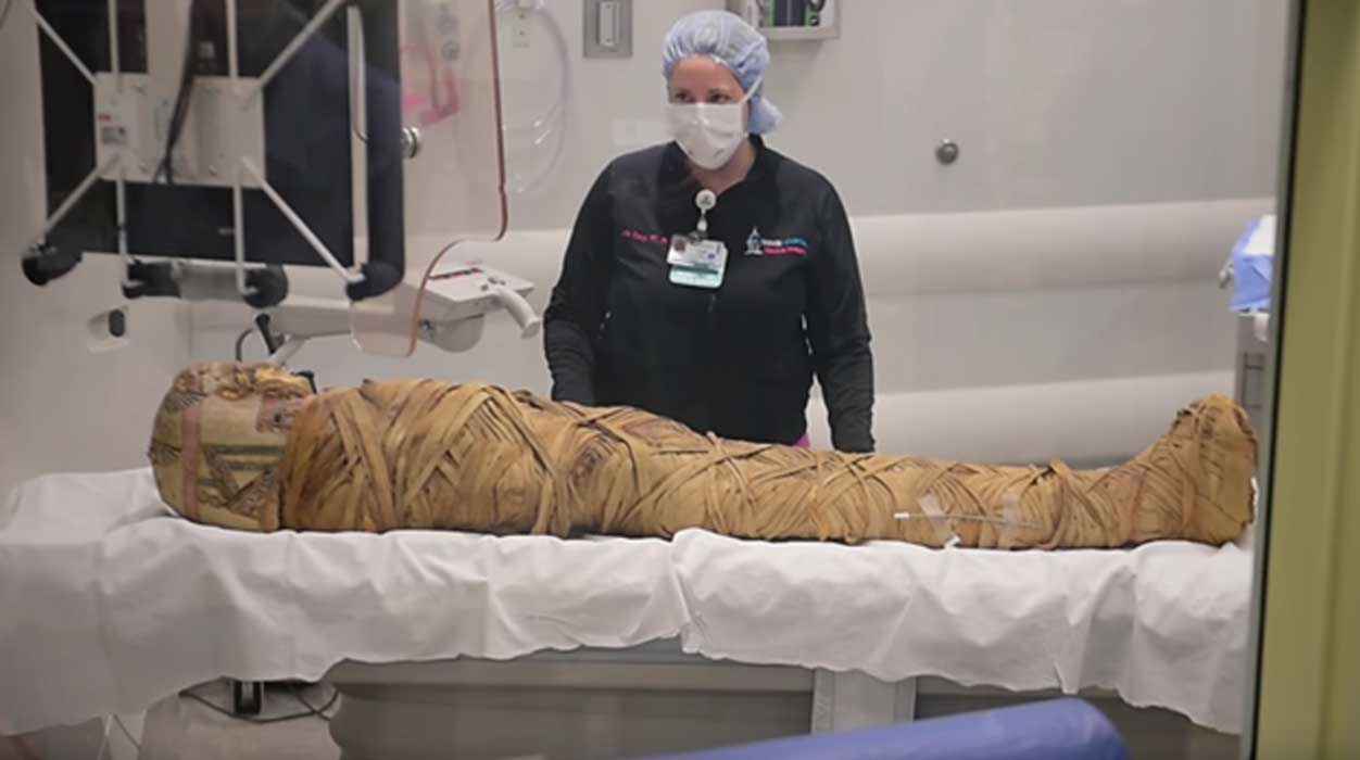 The mummy 'Hen' has been sent for a hospital CT scan for the second time.