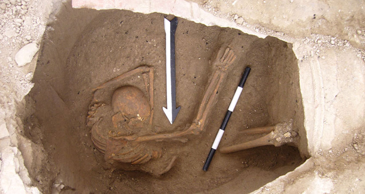 Skeleton found in Sidon, Lebanon, from which the Canaanite DNA was extracted