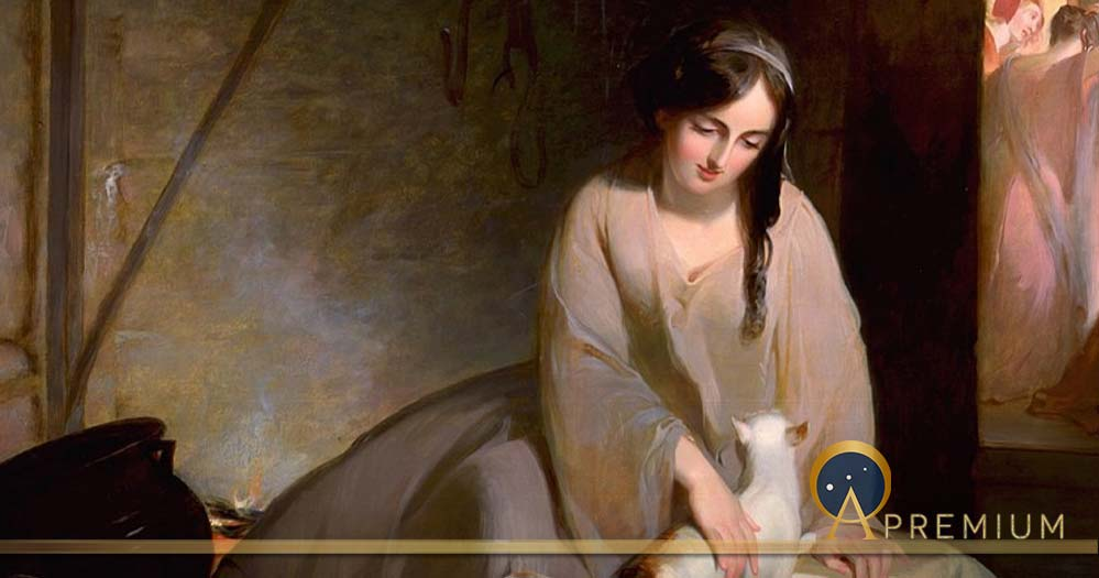 The Cinder-Tree: Origins Of The World's Most Famous Fairy Tale Cinderella