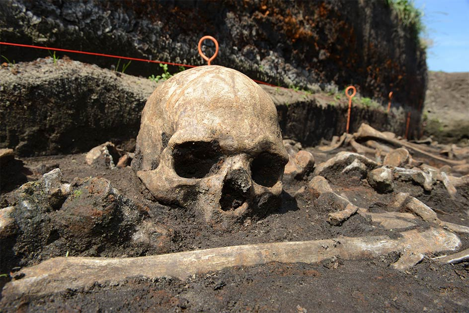 Bronze Age skull in situ in the Tollense valley Source: ©: Stefan Sauer / Tollense Valley Project