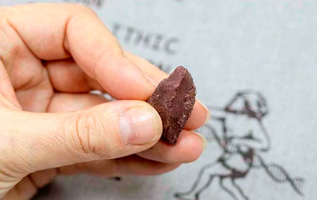 A piece of hematite found in Denisova cave was used as a crayon for art work in the cave.