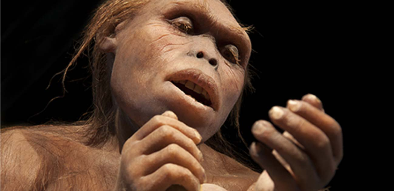 Early hominin works with tools. (procy_ab/AdobeStock)