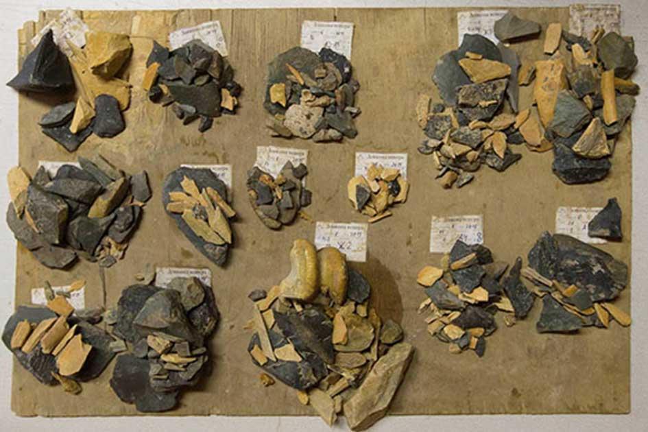 Humanoids from the deep 1981 hd lynn theel nude - 5 5