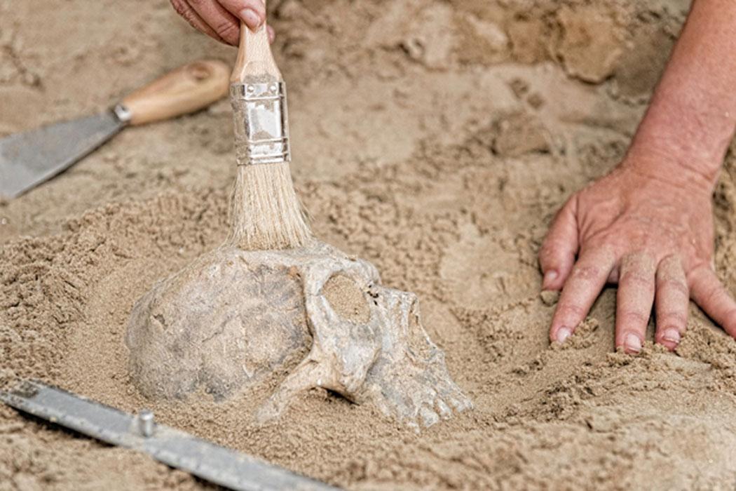 Representative image of skull discovery (not Denisovan)
