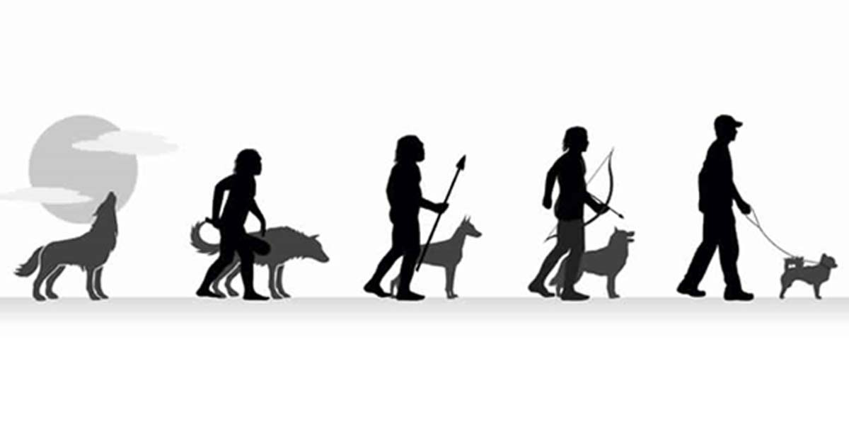Dogs Evolved With Humans