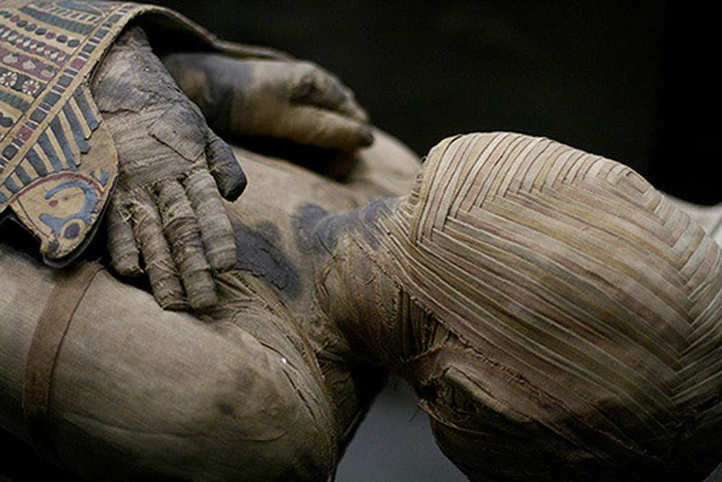 Fetish mummificatiom stories