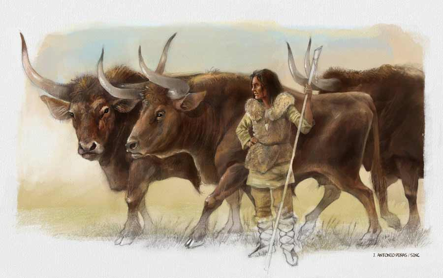 Does Elba the 'Shepherdess' Show Early Animal Domestication?