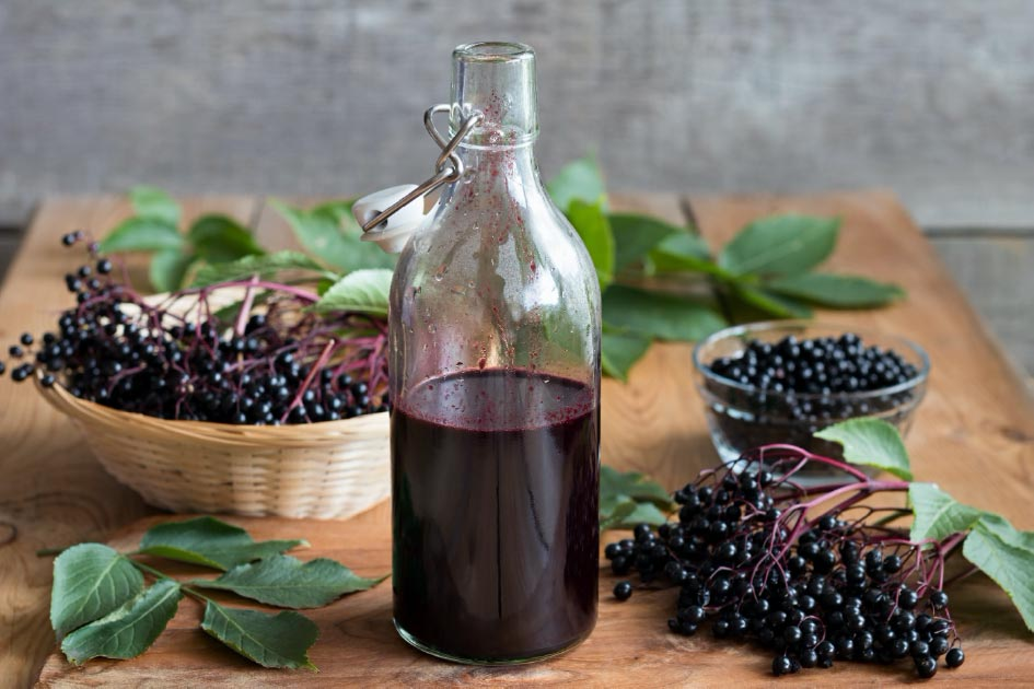 Elderberry remedy as a syrup with fresh elderberries in the background.         Source: Madeleine Steinbach / Adobe stock