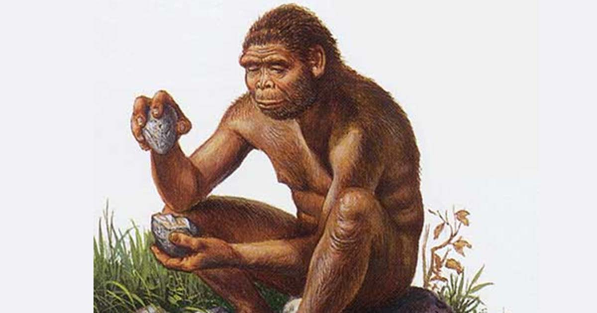 Are you a Righty or Lefty? Ancient Teeth and Tools May Explain the Evolution of Handedness