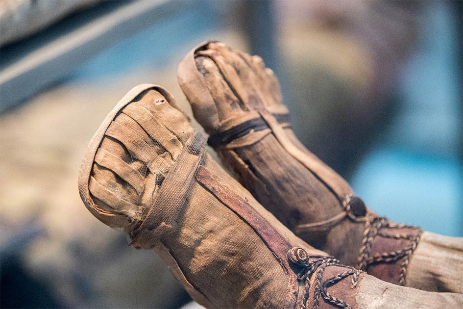 Mummified feet. Credit: Andrea Izzotti / Adobe Stock