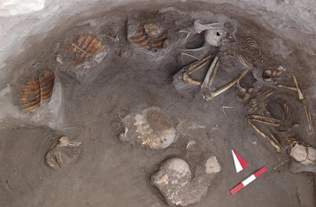 Turtles May Have Been Feasted On as Part of Funeral Rites at Ancient Turkey Site