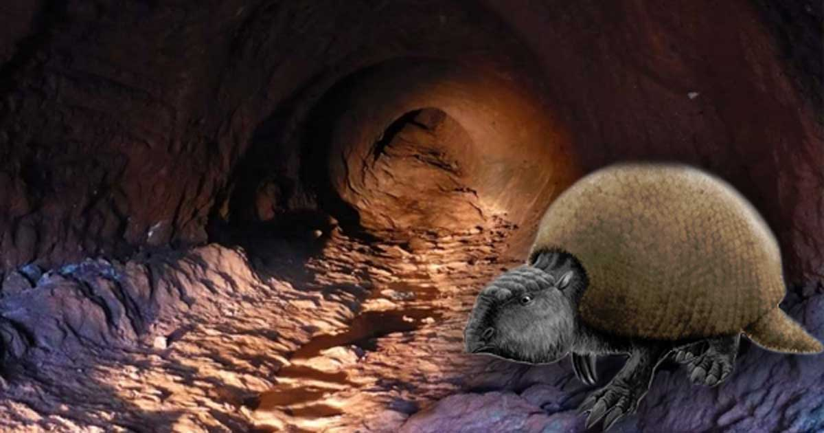 A fictional animal based on the glyptodon and a palaeoburrow (ichnofossil) found in the State of Rio Grande do Sul, Brazil. Scientists say that this mega-tunnel was created by a long extinct species.