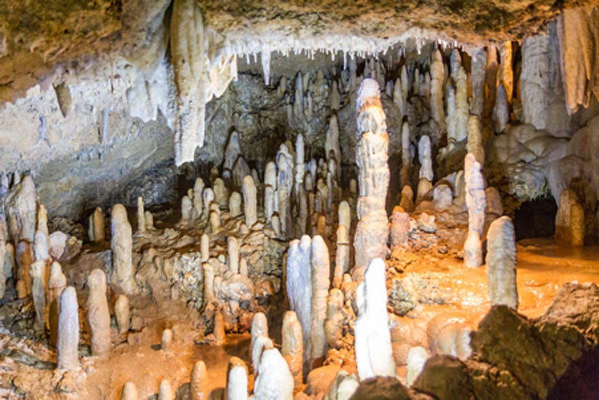 Stalagmites and Stalactites of Harrison's Cave