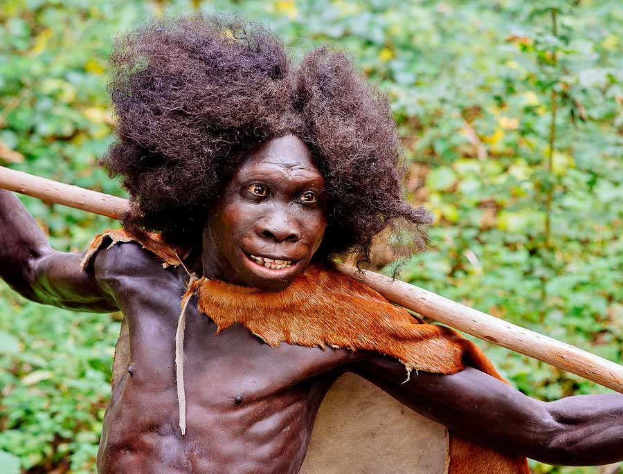 Reconstruction of the Homo erectus Turkana Boy from the Nariokotome, Kenya site, exhibited in the Neanderthal Museum in Erkrath, Germany.