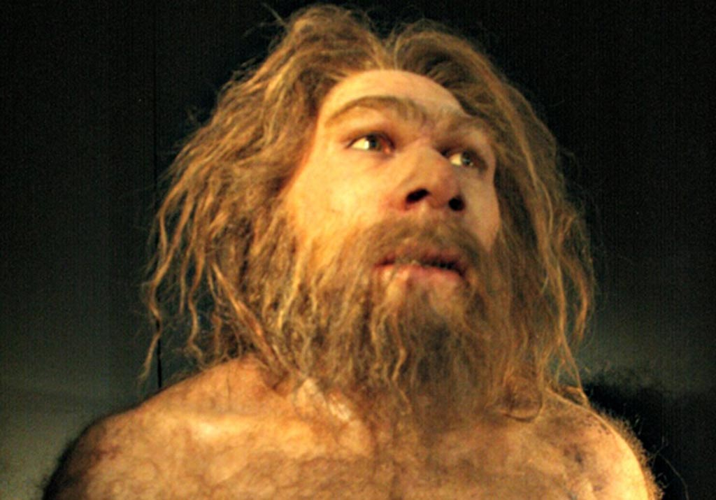 Reproduction of Homo neanderthalensis. Museum of Human Evolution (MEH), Burgos, Spain.