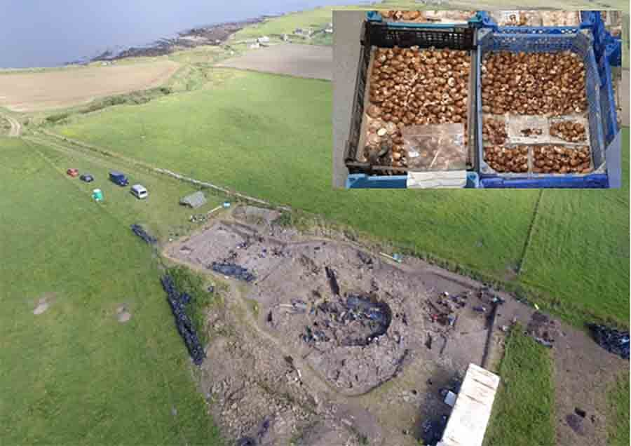 Shellfish Extravaganza at Iron Age Feast Unearthed in Ancient Orkney