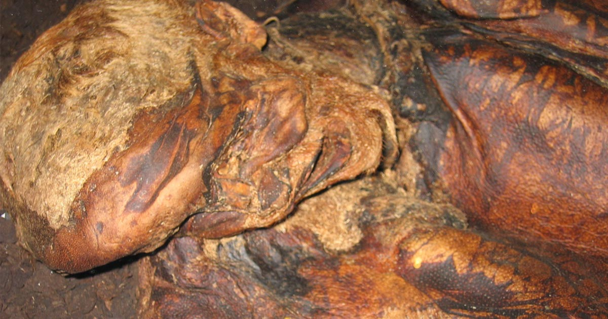 Close up of Lindow Man.      Source: Verity / CC BY-SA 2.0.