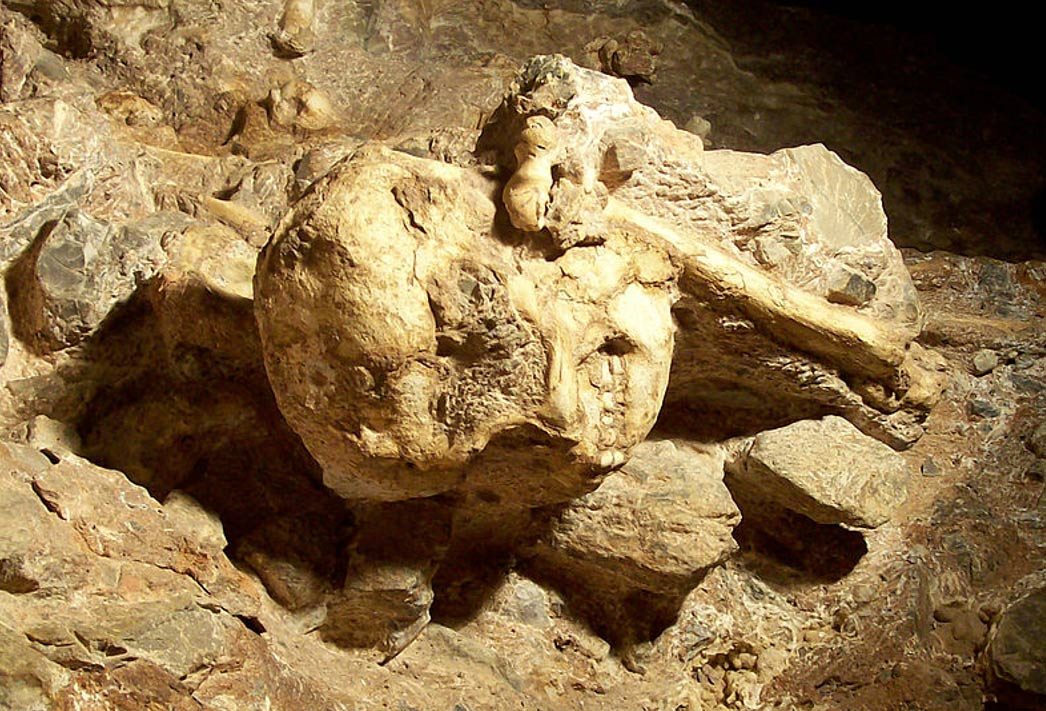 carbon dating human fossils in africa