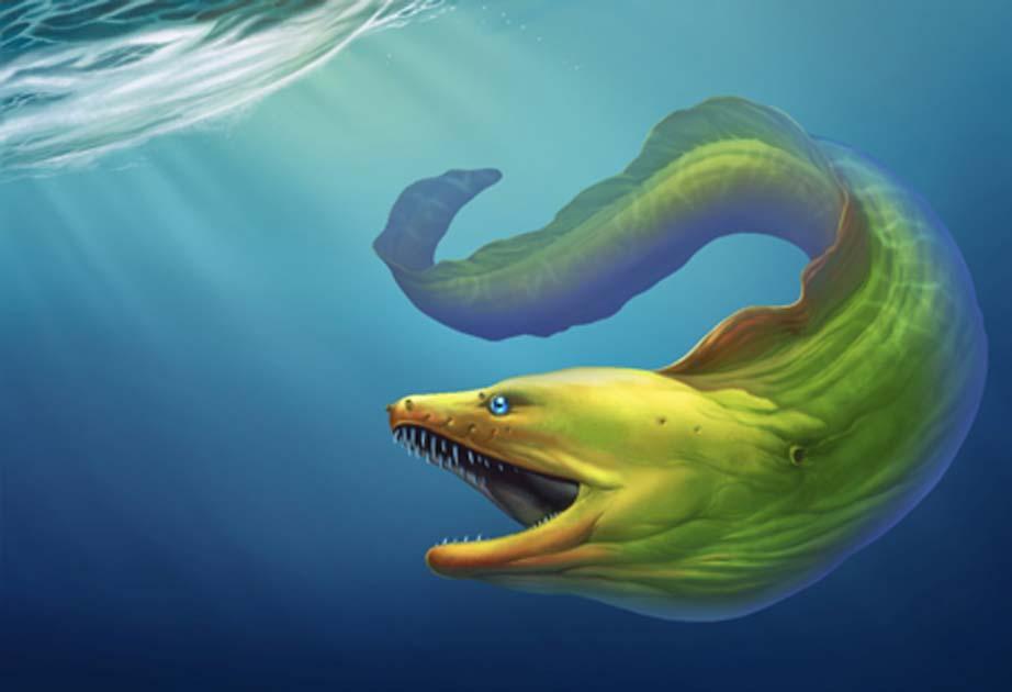 A giant eel. Credit: Konstantin Gerasimov / Adobe Stock