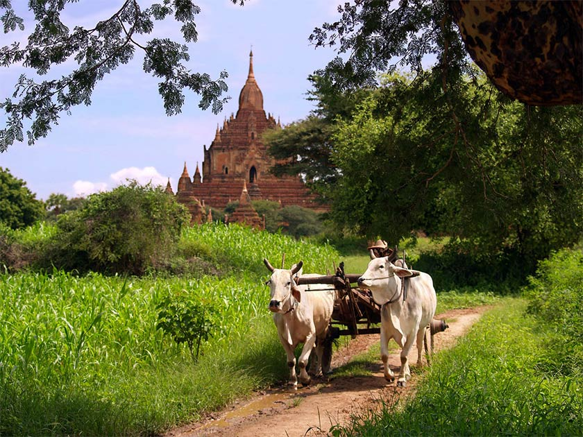Maingmaw was one of the City States that is found throughout what is now Myanmar. Source: FlemishDreams