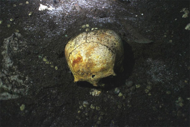 Elongated skull in Mayan cave