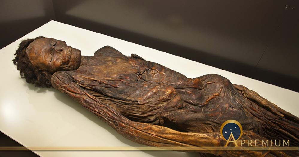 Famous Gaunches Mummies Drenched In Dragons' Blood Like A Stradivarius Violin