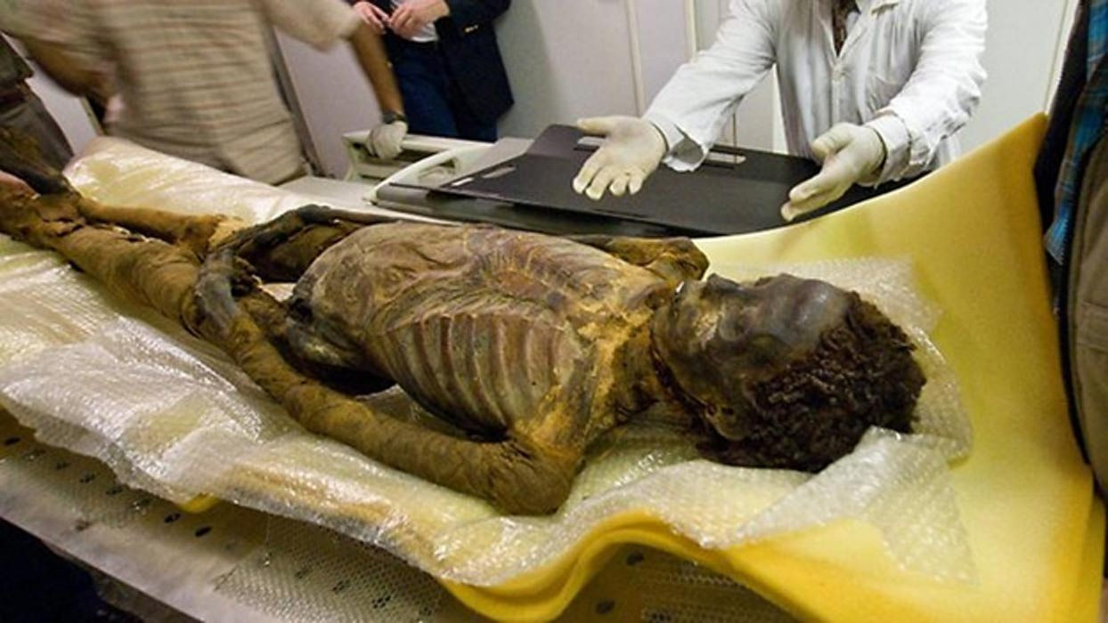 searching for a family the mysterious mummy of maiherpri