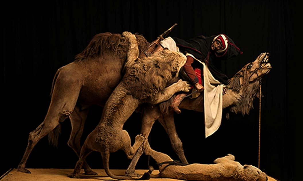 The Lion Attacking a Dromedary diorama.