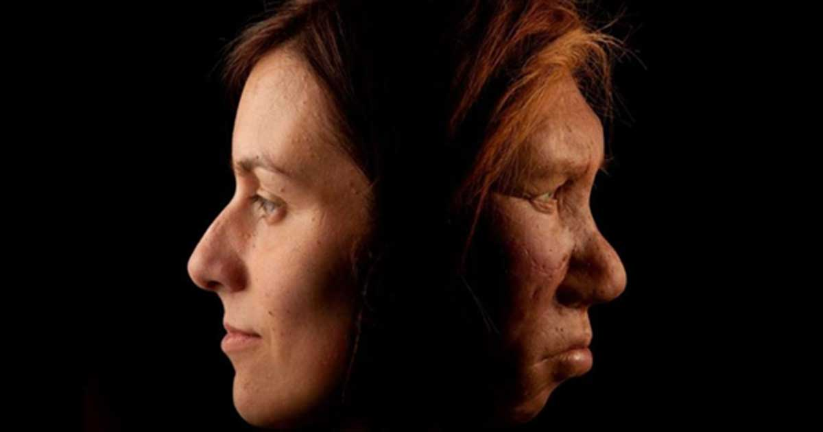 A modern human, left, and Neanderthal woman, right.