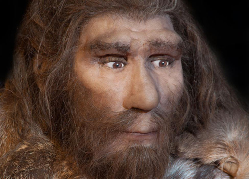 Representation of a Neanderthal. A new study of Neanderthal DNA tells the story of their migrations between Europe and Siberia. Source: procy_ab /Adobe Stock