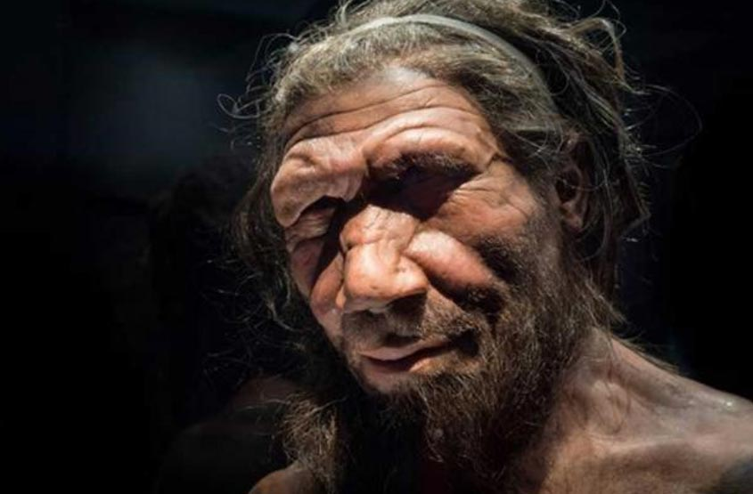 Neanderthal man at the Natural History Museum London
