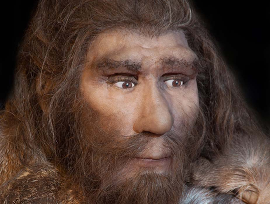 Around 30,000 years ago, the last remaining Neanderthals in Spain died out (procy_ab / Adobe)