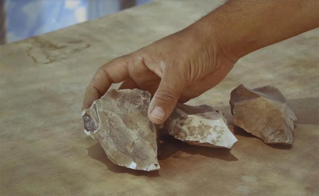 Tools featuring Nubian Levallois technique found in situ by Dimona, in the Negev Desert, Israel. Source: Emil Eladjem, Israel Antiquities Authority
