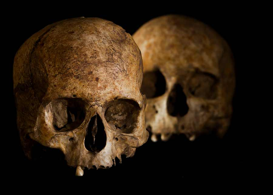 Spanish researchers have released their scientific study of the Neolithic age skulls and ritual artifacts found in one of the Dehesilla caves south of Cadiz, Spain.