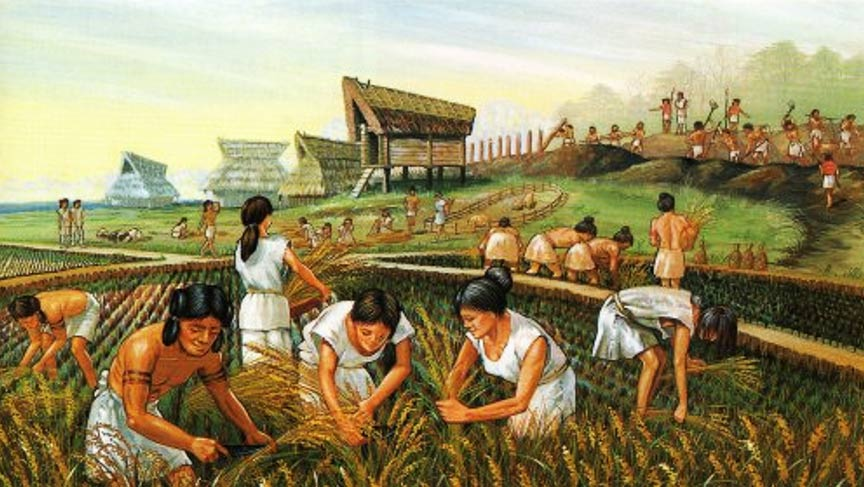 Ancient farmers - A Neolithic Revolution