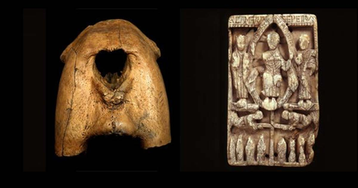 Left: Upper jaw bones of a walrus, with tusks removed. Right: an elaborately-carved ecclesiastical walrus ivory plaque.