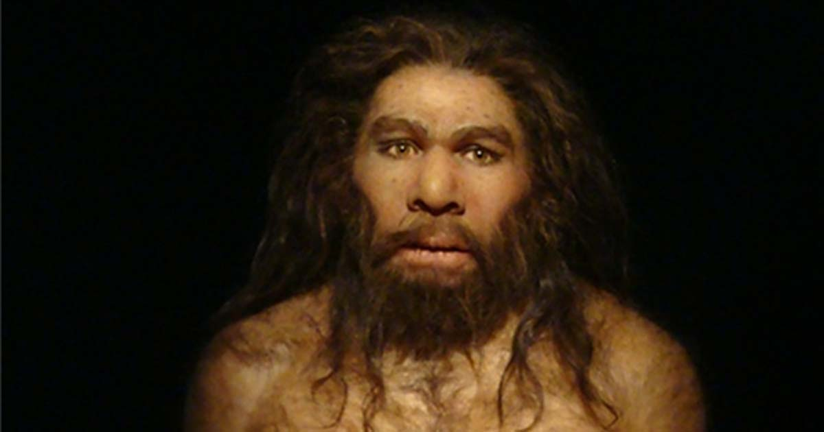 More Than Brutish Grunting Can One Bone Prove Neanderthal