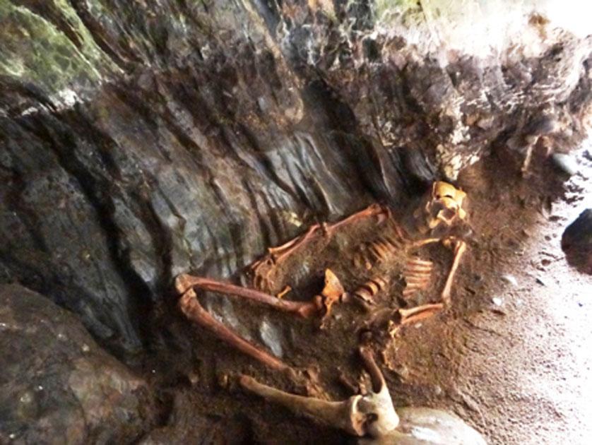 The Pictish man's skeleton. (NOSAS)