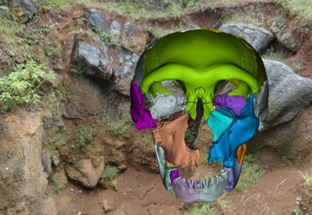 300,000-year-old fossils of as many as 16 individual human ancestors have been found in a collapsed cave in China. Here is a reconstruction of a skull found at the site. Source: Wu Xiujie and Erik Trinkaus