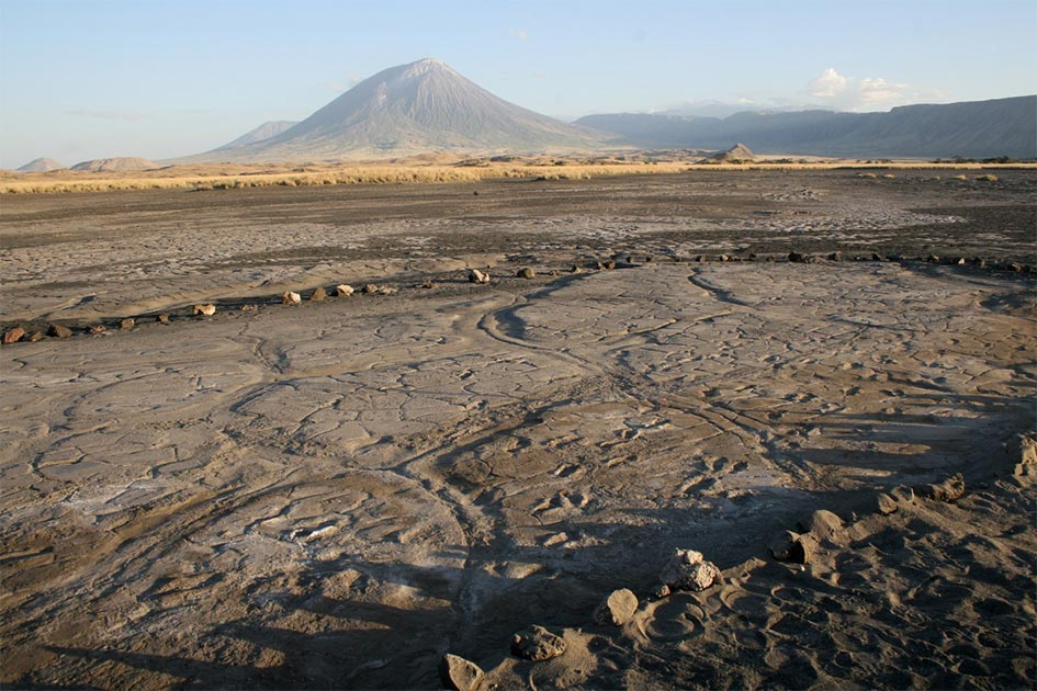 The Engare Sero footprint site, which preserves at least 408 prehistoric footprints dated to between 19,100 and 5,760 years ago. An eruption of Ol Doinyo Lengai, the volcano in the background, produced the ash in which the human footprints were preserved.   Source: Cynthia Liutkus-Pierce / Nature