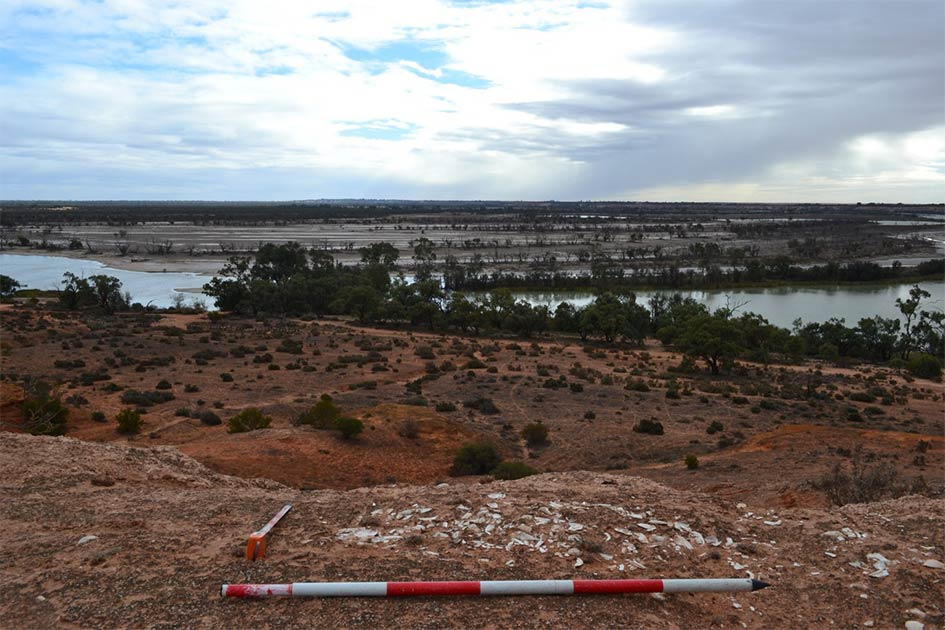 Exposed shell midden on the Pike River cliff line near the Riverland region Aborigines' project site.      Source: Flinders University