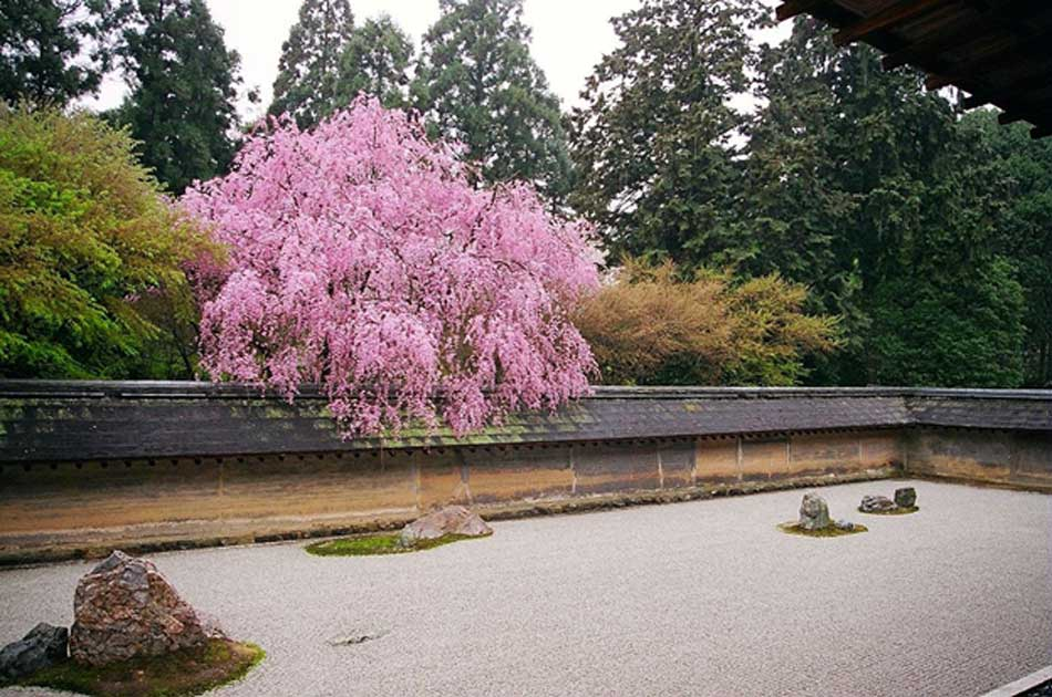 Finding Zen in the World's Most Famous Rock Garden
