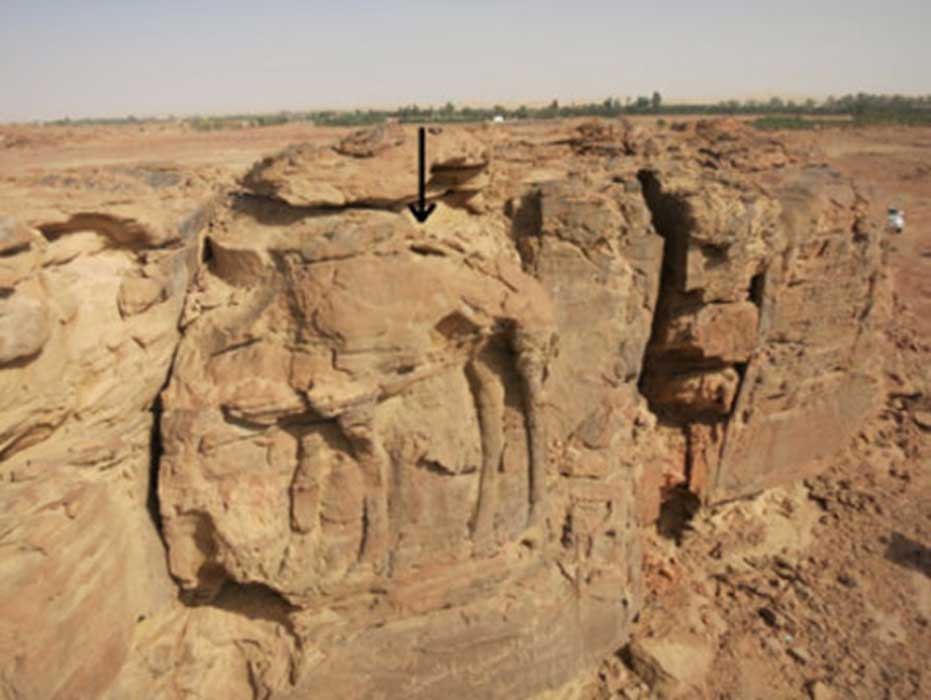High relief of standing dromedary on sandstone spur at center of image.
